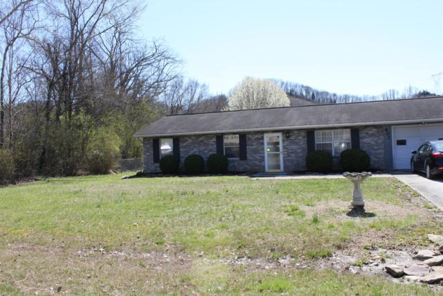 407 Edgemoor Lane Lane, Powell, TN 37849 (#1073267) :: Billy Houston Group