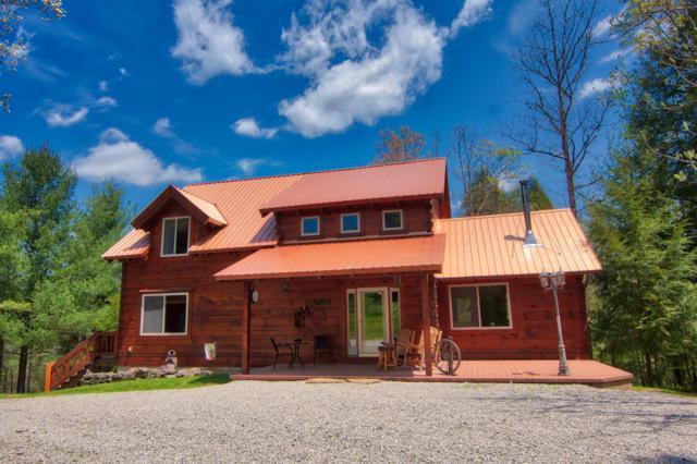 315 Sun Branch Drive, Jamestown, TN 38556 (#1073391) :: Shannon Foster Boline Group