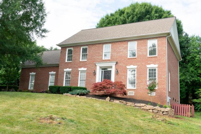 1229 Whitower Drive, Knoxville, TN 37919 (#1073458) :: Shannon Foster Boline Group