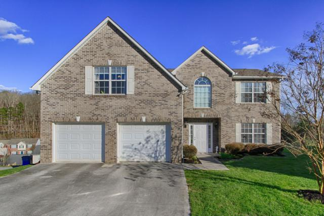 7400 Misty View Lane, Knoxville, TN 37931 (#1073529) :: CENTURY 21 Legacy