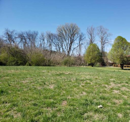 River Bank Rd, Pigeon Forge, TN 37863 (#1073582) :: The Terrell Team