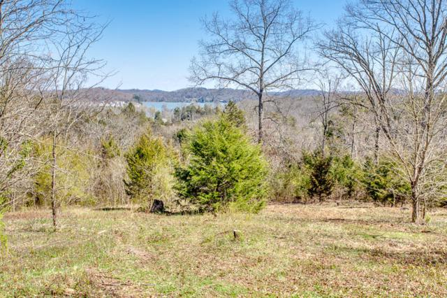 3115 High View Drive, Louisville, TN 37777 (#1073934) :: Billy Houston Group