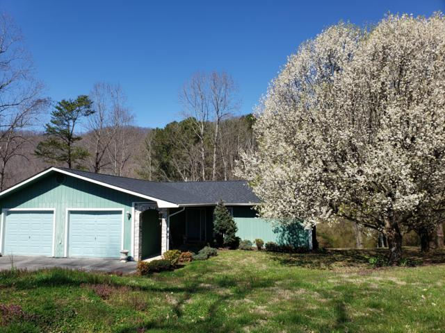 1503 Back Valley Rd, LaFollette, TN 37766 (#1073935) :: Billy Houston Group