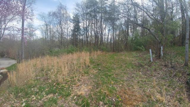 Rockingham Lane, Oak Ridge, TN 37830 (#1074025) :: Venture Real Estate Services, Inc.