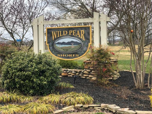 133 Fair Meadows Dr, Dandridge, TN 37725 (#1074157) :: Adam Wilson Realty