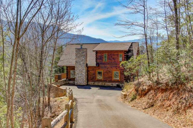 3902 Duck Hollow Rd, Gatlinburg, TN 37738 (#1074227) :: Venture Real Estate Services, Inc.