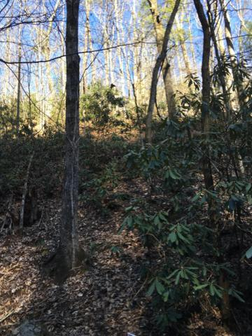 Mountain Blvd, Sevierville, TN 37876 (#1074245) :: Shannon Foster Boline Group
