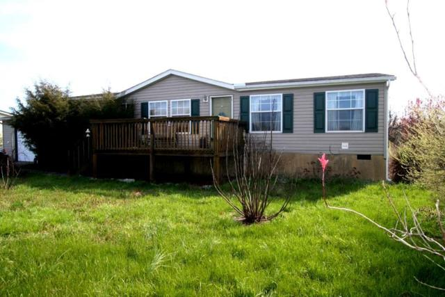 2220 Binginham Island, Sevierville, TN 37876 (#1074468) :: Venture Real Estate Services, Inc.