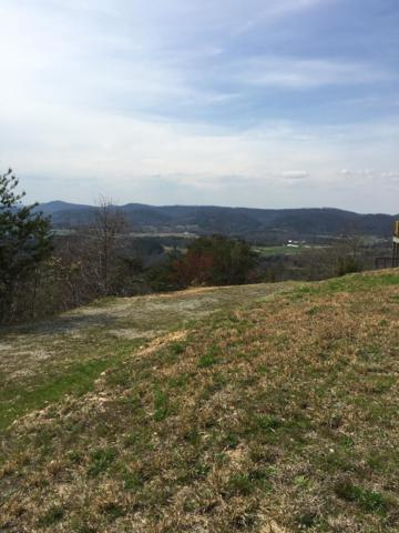 118 Skyline Drive, Tellico Plains, TN 37385 (#1074797) :: Venture Real Estate Services, Inc.