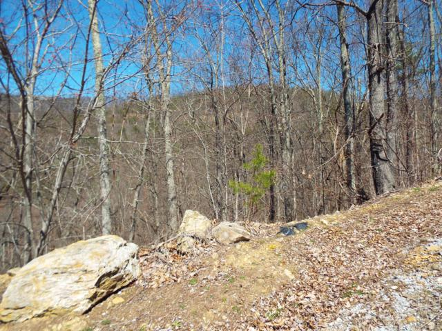 Redtail Road, Sevierville, TN 37862 (#1074968) :: The Terrell Team