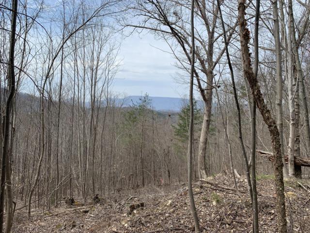 Eagle Mountain Road Way, Newport, TN 37821 (#1075199) :: A+ Team