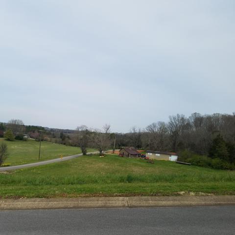 Bentview Drive, Kodak, TN 37764 (#1075320) :: The Terrell Team