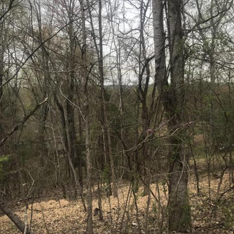 Dan Circle, Rockwood, TN 37854 (#1075407) :: CENTURY 21 Legacy