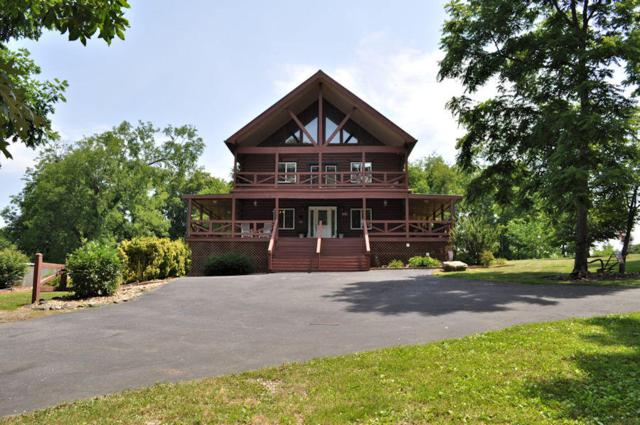 2221 Linn View Drive, Seymour, TN 37865 (#1075411) :: The Creel Group | Keller Williams Realty