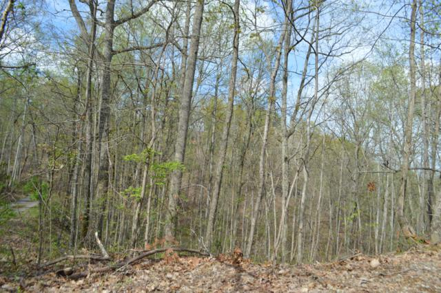 Lot 50 Estates Drive, Seymour, TN 37865 (#1075498) :: The Terrell Team