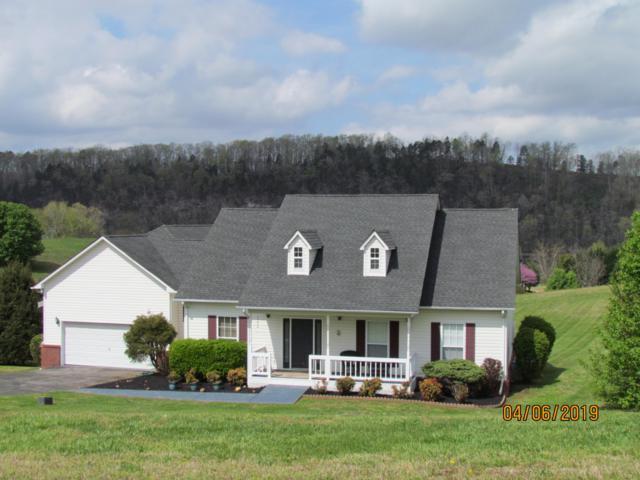 338 Marble Bluff Drive Drive, Kingston, TN 37763 (#1075720) :: Venture Real Estate Services, Inc.