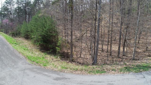 Lot 829 Wildcat Hollow Rd, New Tazewell, TN 37825 (#1075841) :: Venture Real Estate Services, Inc.
