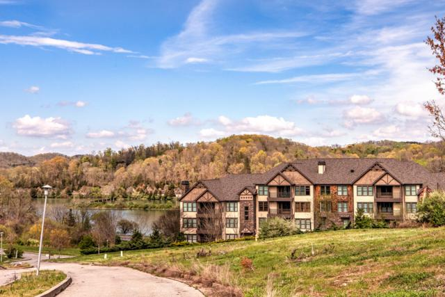 332 Centennial Bluff Blvd, Oak Ridge, TN 37830 (#1075940) :: Billy Houston Group