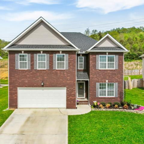 6115 Hollow View Lane, Knoxville, TN 37924 (#1076083) :: SMOKY's Real Estate LLC