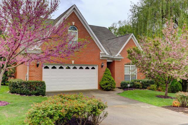 1149 Evelyn Mae Way, Knoxville, TN 37923 (#1076173) :: Billy Houston Group