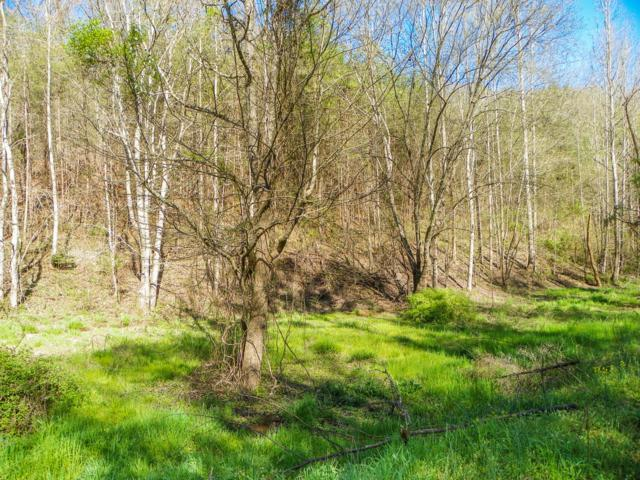 Lot# 20 Licking Spring Way, Sevierville, TN 37876 (#1076292) :: The Cook Team