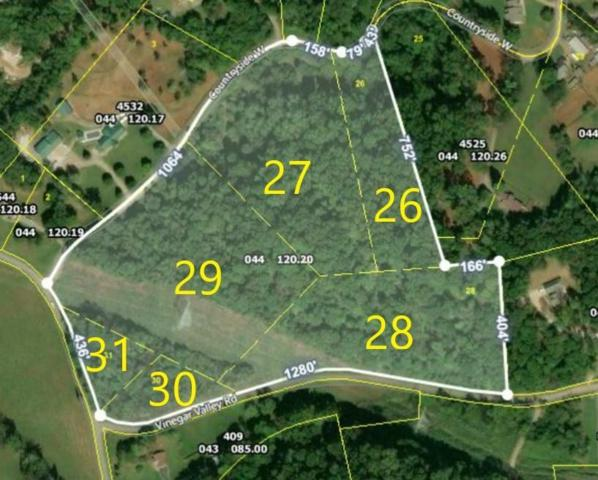 4572 Vinegar Valley Rd, Friendsville, TN 37737 (#1076412) :: Catrina Foster Group