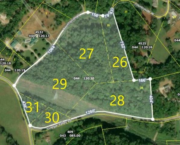 359 W Vinegar Valley Rd, Friendsville, TN 37737 (#1076414) :: Catrina Foster Group