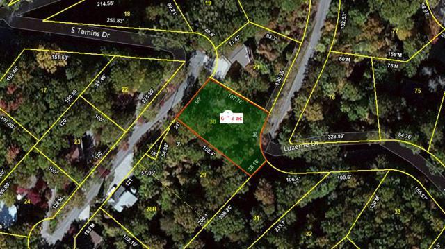 Lot 30 S Tamins Drive, Gatlinburg, TN 37738 (#1076618) :: The Terrell Team