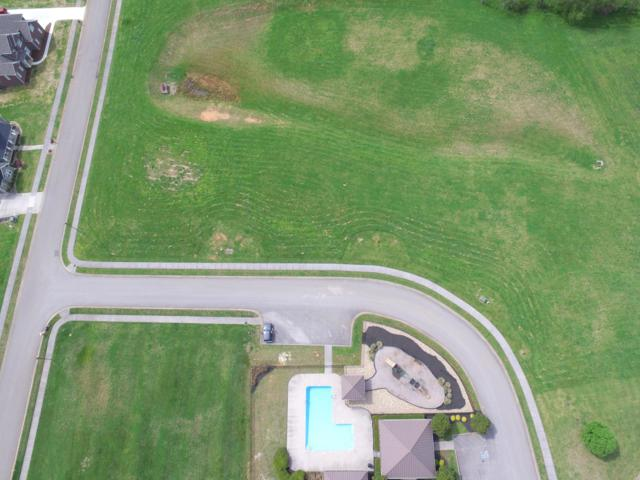 Lot 75 Cascading Falls Lane, Sevierville, TN 37876 (#1076733) :: The Terrell Team