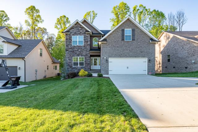 11911 Black Rd, Knoxville, TN 37932 (#1076817) :: Catrina Foster Group