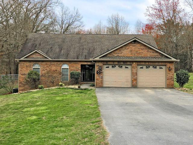 504 Timberline Drive, White Pine, TN 37890 (#1076820) :: Venture Real Estate Services, Inc.