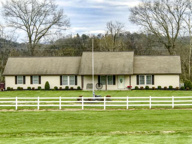 135 Transport Drive, Newport, TN 37821 (#1076825) :: SMOKY's Real Estate LLC
