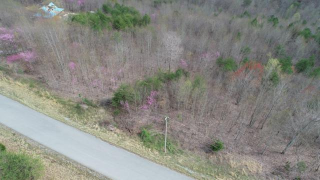 Lot 560 Whistle Valley Rd, New Tazewell, TN 37825 (#1076831) :: Venture Real Estate Services, Inc.