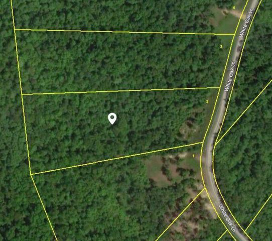 White Oak Lane, Crawford, TN 38554 (#1076889) :: Billy Houston Group