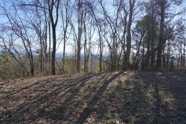 Overlook Loop, Vonore, TN 37885 (#1076968) :: Catrina Foster Group