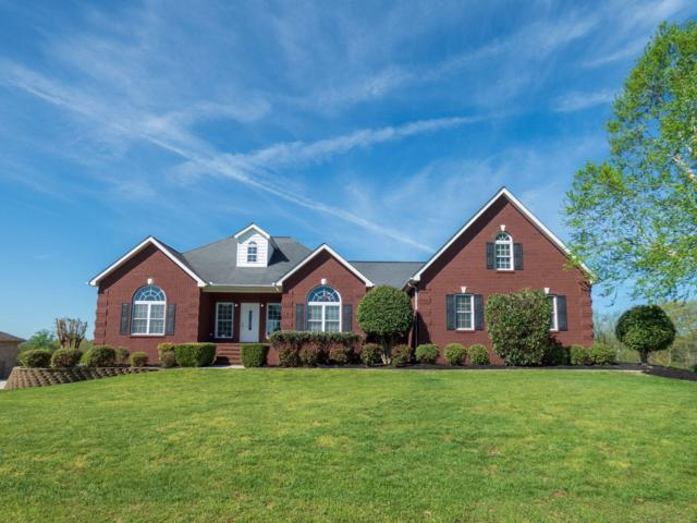 705 Tips Way, Maryville, TN 37804 (#1076999) :: The Cook Team