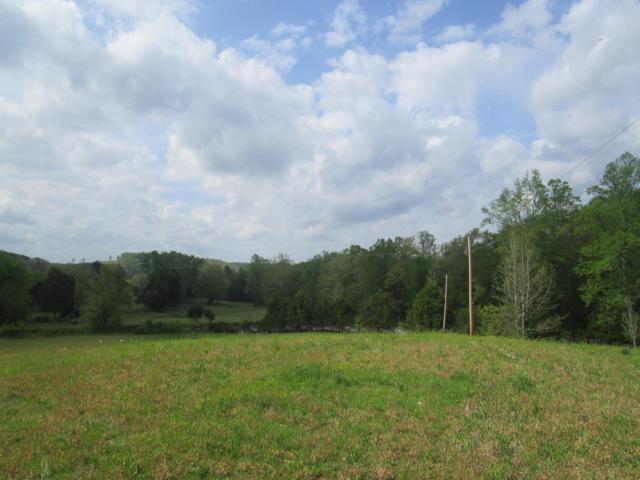 N N Nopone Road Rd, Decatur, TN 37322 (#1077094) :: Billy Houston Group