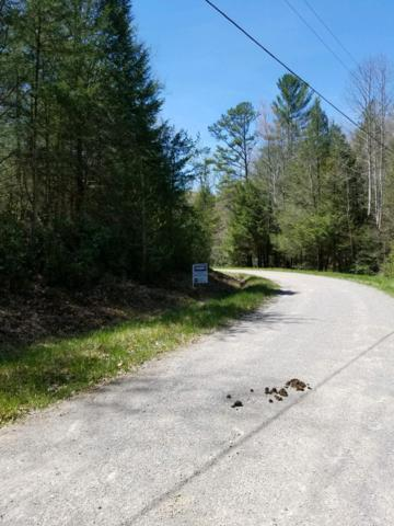Indian Rock Rd, Jamestown, TN 38556 (#1077125) :: Venture Real Estate Services, Inc.