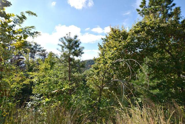 2084 Bluff Mountain Rd, Sevierville, TN 37876 (#1077225) :: SMOKY's Real Estate LLC