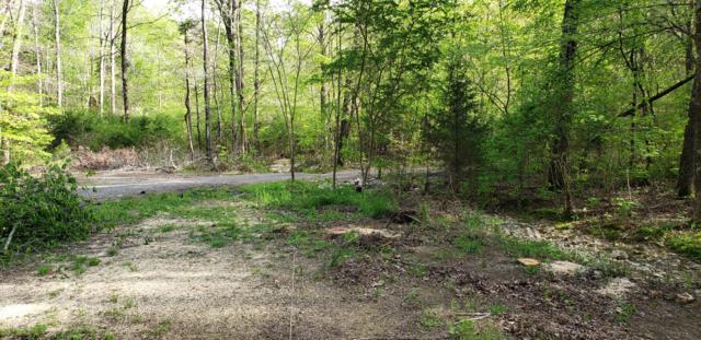 144 Paint Rock Trail Tr, Philadelphia, TN 37846 (#1077291) :: SMOKY's Real Estate LLC