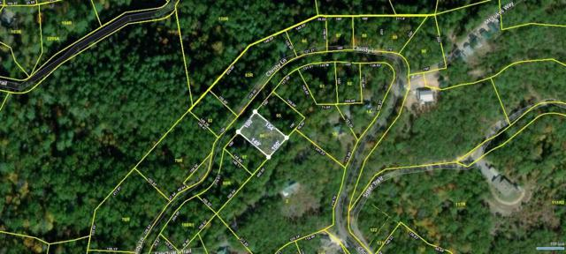 841 Christy Lane, Townsend, TN 37882 (#1077451) :: Venture Real Estate Services, Inc.