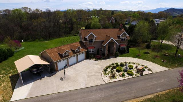 2206 Rogers Place, Sevierville, TN 37876 (#1077516) :: The Terrell Team
