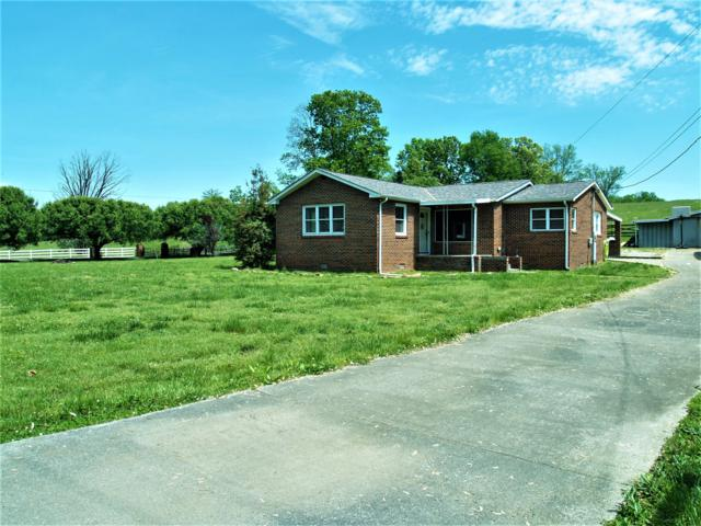 544 Chilhowee View Rd, Maryville, TN 37803 (#1077842) :: Shannon Foster Boline Group