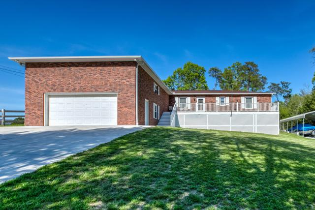 291 Mccarty Rd, LaFollette, TN 37766 (#1077852) :: Shannon Foster Boline Group