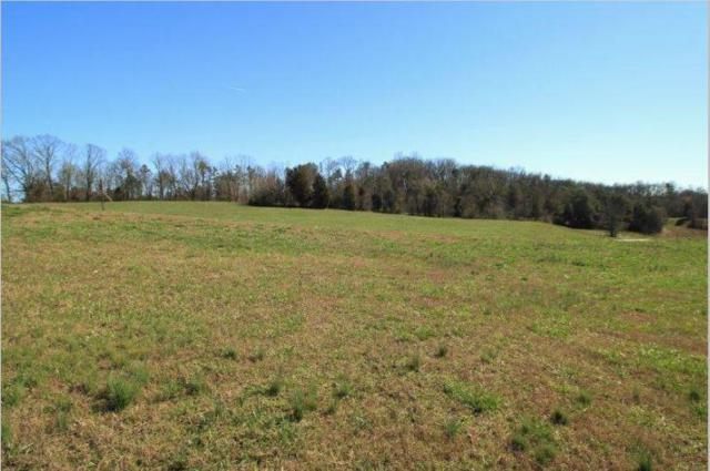 190 Thunder Ridge Dr., Vonore, TN 37885 (#1078005) :: Shannon Foster Boline Group