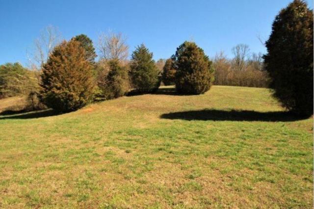 174 Thunder Ridge Dr., Vonore, TN 37885 (#1078007) :: Shannon Foster Boline Group