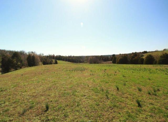 157 Thunder Ridge Dr., Vonore, TN 37885 (#1078026) :: Shannon Foster Boline Group
