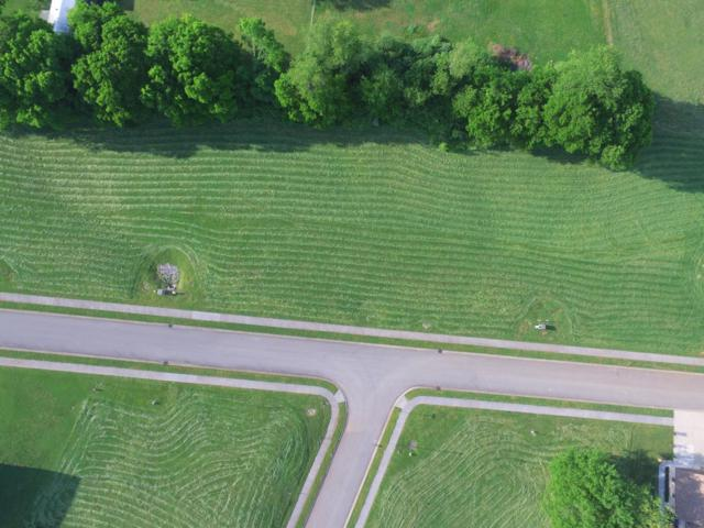 Lot 23 Rippling Waters Circle, Sevierville, TN 37876 (#1078378) :: The Terrell Team