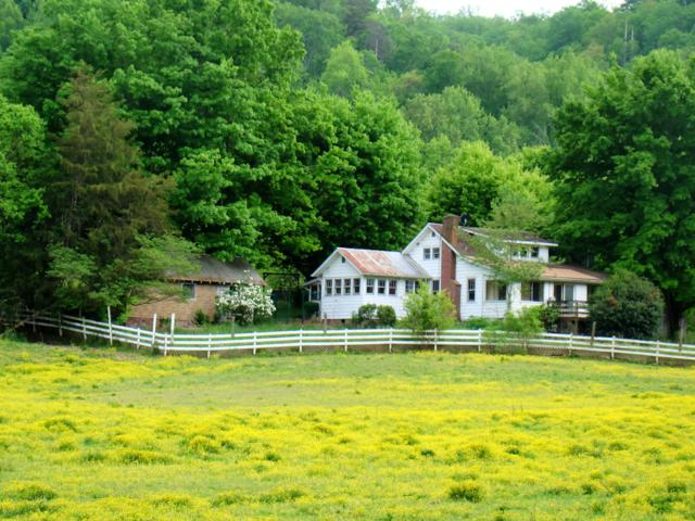4201 Wears Valley Road, Sevierville, TN 37862 (#1078675) :: The Creel Group | Keller Williams Realty