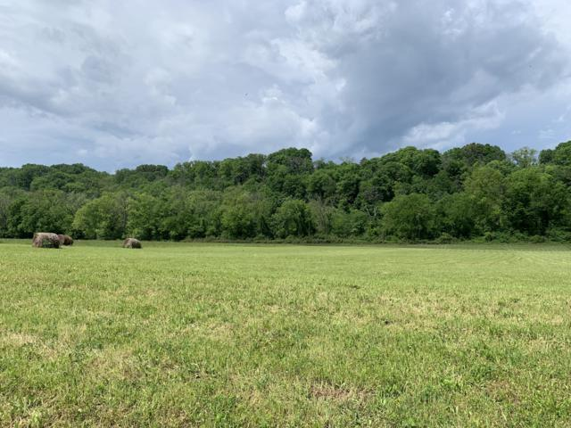 Lot 16-R Secluded River Circle, Parrottsville, TN 37843 (#1079288) :: Venture Real Estate Services, Inc.